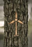 Sign windmill on the bark Stock Illustration