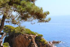 Spanish landscape with sea and rocks Kuvituskuvat
