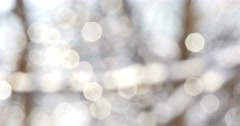 Stock Video Footage of Winter White Bokeh Circles 4k
