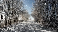 Winter road on a sunny frosty day with blue sky and snow, christmas background Stock Footage