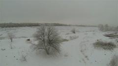 Flight around  frozen tree.  Aerial shot in 2.7K (2704x1524) Stock Footage