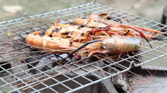 Shrimps barbecue. Barbecue With Delicious Sea Food On Grill. Arkistovideo