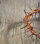 Crown of Thorns and drops of blood - stock photo