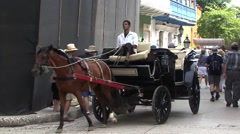 Horse carriage Columbia Stock Footage