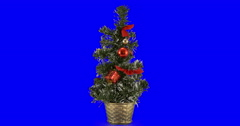 Christmas tree isolated loop 04 - stock footage