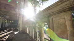 Interior of Old Abandoned Building With Palm Tree Stock Footage