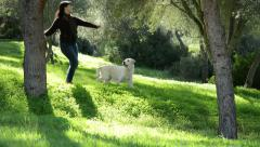 Woman walking with Labrador dog and warping a branch - stock footage