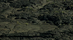 Aerial Idaho USA desert nature landscape Wilderness - stock footage