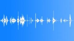 Alien creature eating - mix 2 - larger creature Sound Effect