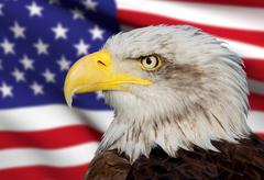 Stock Illustration of a beautiful bald eagle with a background of a usa flag