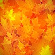 floral autumn (fall) background with maple leaves - stock illustration