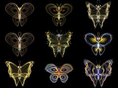 Visualization of Fractal Butterflies - stock illustration