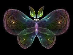 Stock Illustration of Butterfly Elements