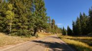 Stock Video Footage of 4K Driving through Foliage 02 Grand Canyon North Rim Aspen Forest