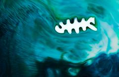 Fish color flow Stock Illustration