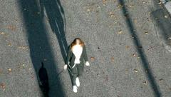 High angle top view of a woman walking in a park with her dog Stock Footage