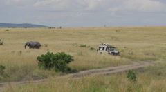 Tourists in jeep on a game ride through Maasai mara Stock Footage