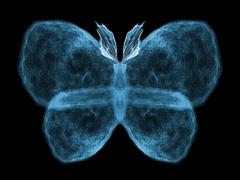 Butterfly Design Stock Illustration