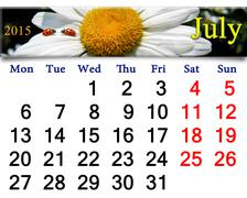 Calendar for july with ladybirds on camomile Stock Illustration