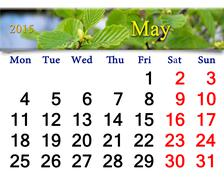 Calendar for may of 2015 year with alder leaves Stock Illustration