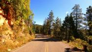 Stock Video Footage of 4K Driving through Foliage 18 Grand Canyon North Rim Aspen Forest
