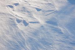 white snow - stock photo