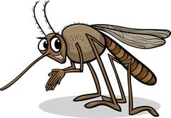 mosquito insect cartoon illustration - stock illustration