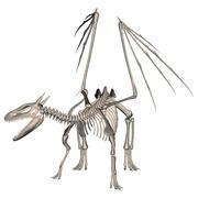 Dragon Skeleton Stock Photos