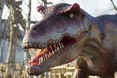 Allosaurus - Allosaurus fragilis Stock Photos