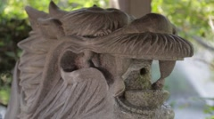 Lion-shaped fountain in a temple, Tokyo, Japan Stock Footage