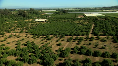 Aerial California USA Farming crops field arable agricultural - stock footage
