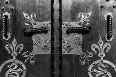 Wooden door with ancient floral patten Stock Photos