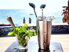 Bar accessories with inox shaker, mint in a glass on the sea Stock Photos