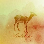 vector vintage illustration of a watercolor antelope on the old  paper texture - stock illustration