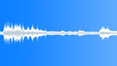 Ambience_seashore bull bay_05.wav Sound Effect