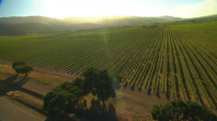 Aerial California USA arable farmland crops agricultural Landscape - stock footage