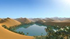 Oasis hidden in the desert Stock Footage