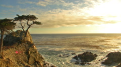 Lone Cypress at Sunset in Pebble Beach, California Stock Footage