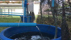 Blue Plastic Pipe Drain Water To The Bowl Stock Footage