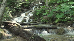 Clean fresh water of a forest stream running over rocks - stock footage