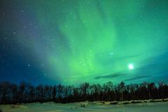 northern lights (aurora borealis) over snowscape. - stock photo