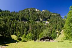 Cottage, country cottage, wooden house, small house, pasture, Wendelstein Mounta Stock Photos