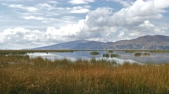 Titicaca lake reed mountains bolivia Stock Footage