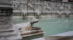 Fountain Gaia of Siena  - Italy Stock Footage