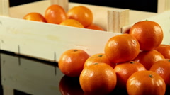 Slider shot of group of mandarins in wooden crate standing on black background Stock Footage
