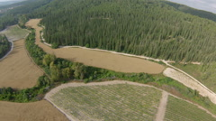 Aerial view of  Jerusalem mountains, wheat field and forests, Israel Stock Footage