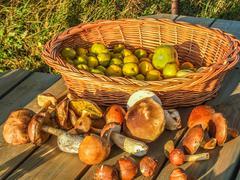 autumn fruits - stock photo