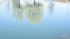 Water Reflection Trees Stock Footage