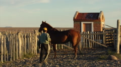 Argentina Gauchos - Gaucho handles Horse in Coral Stock Footage