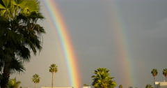 End of a double rainbow with palm trees - stock footage